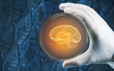 Group Completes First Dose of Stem Cells for Bradykinesia